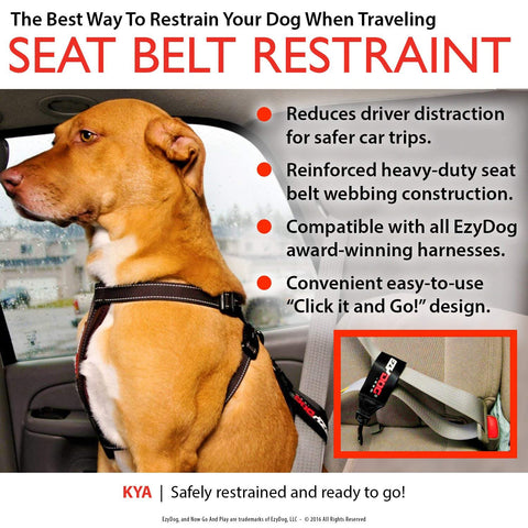 EzyDog Car Seat Belt Attachment