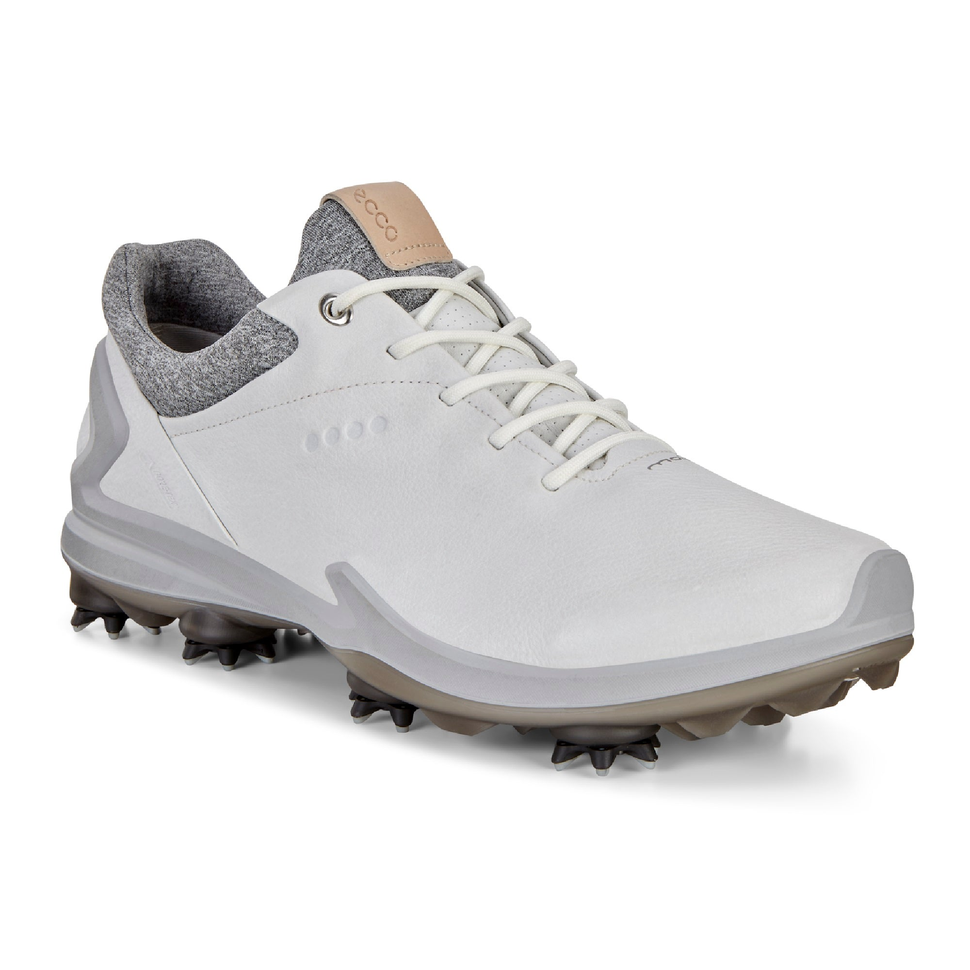 Ecco Biom G3 Gore-Tex Golf Shoe 131804