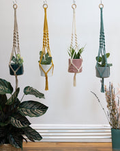 Load image into Gallery viewer, Spiral macrame plant hanger