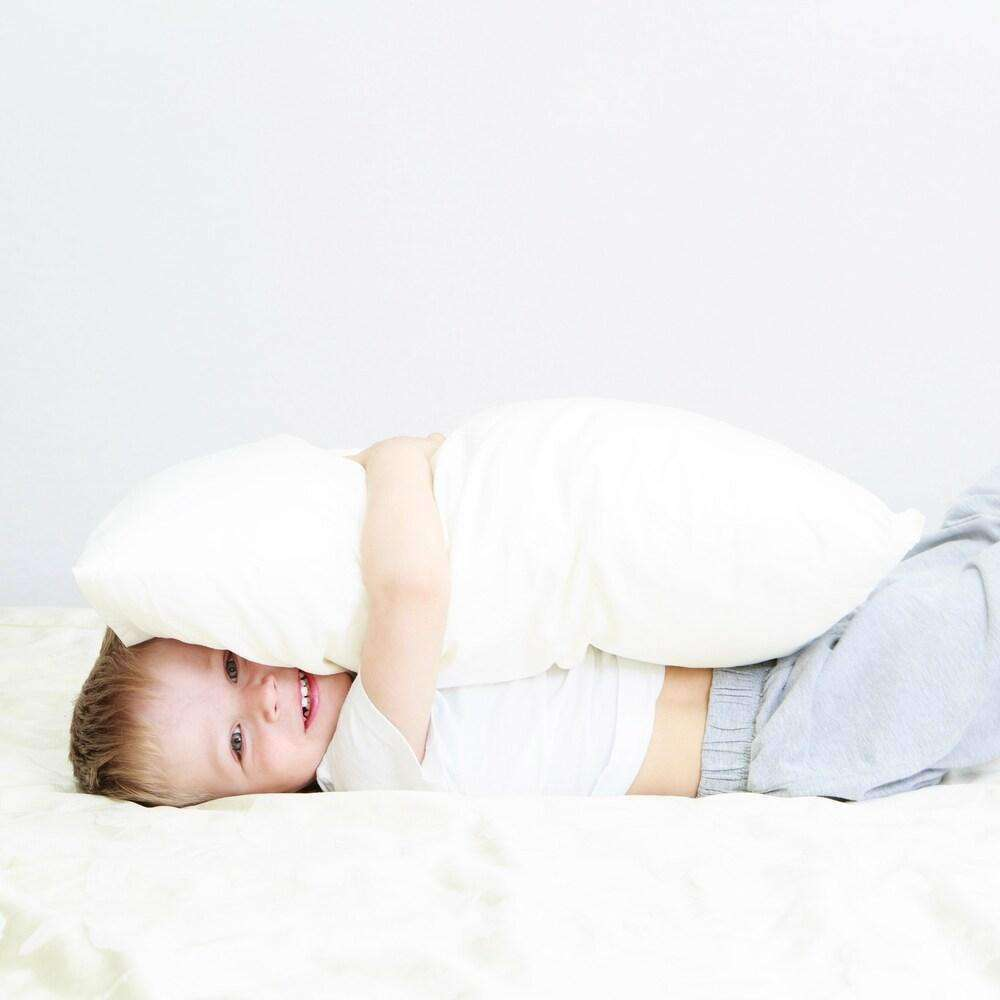 Toddler Pillow- Shredded Memory Foam Pillow - Everyday Home- Nyrod