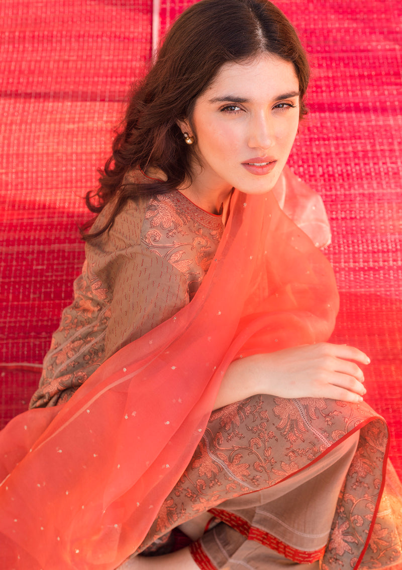 Dull Red Sequin Embroidered Organza Dupatta