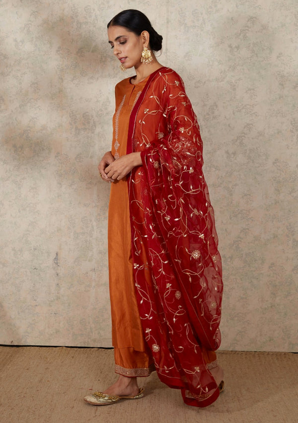 Dull Red Festive Jaal Embroidered Organza Dupatta