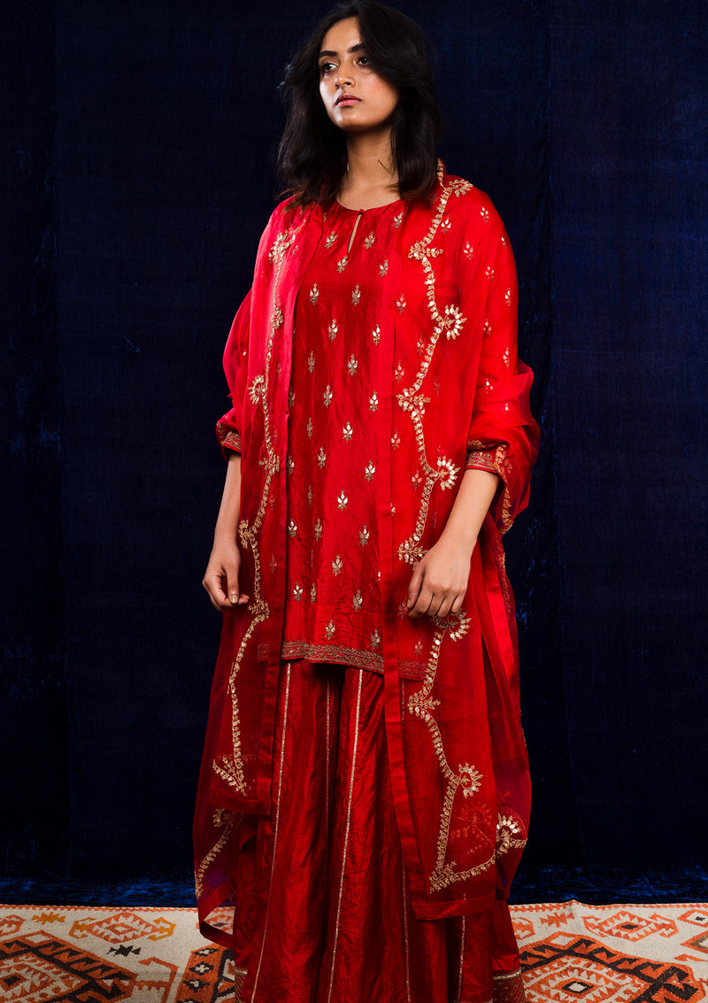 Red Border Embroidered Organza Dupatta