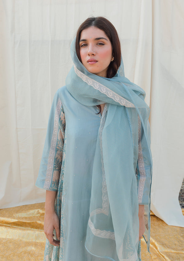 Light Blue Dotted Organza Dupatta with Lace
