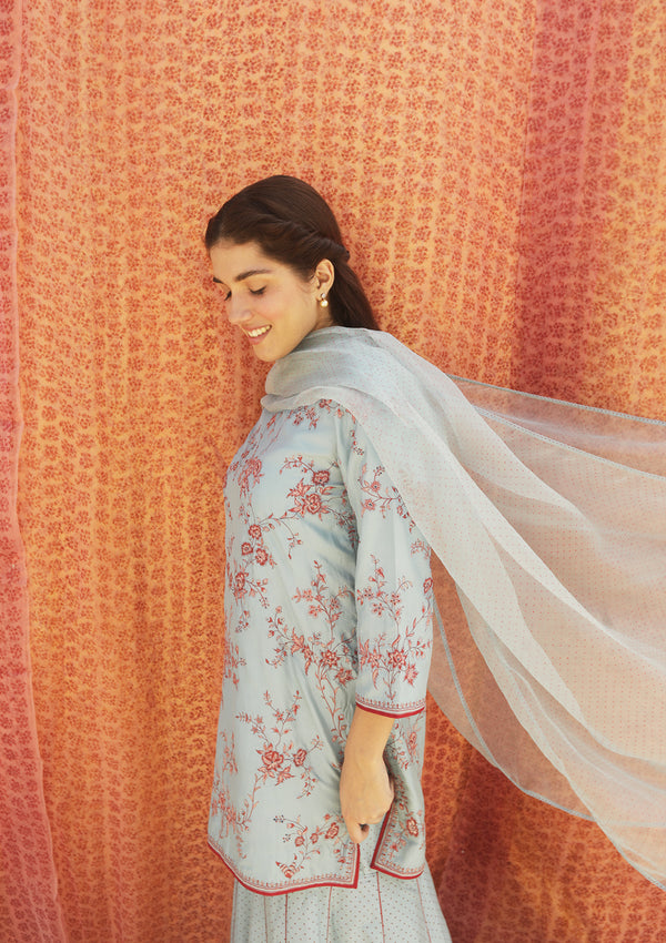 Light Blue Dotted Organza Dupatta With Fine Edging