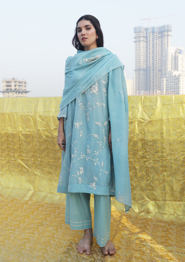 Powder Blue Floral Embroidered Kali Kurta and Pants