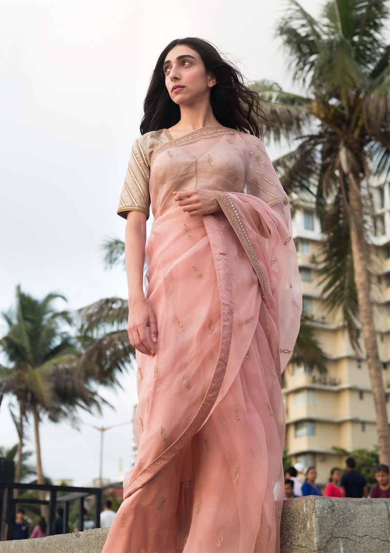 Salmon Pink Embroidered Organza Saree