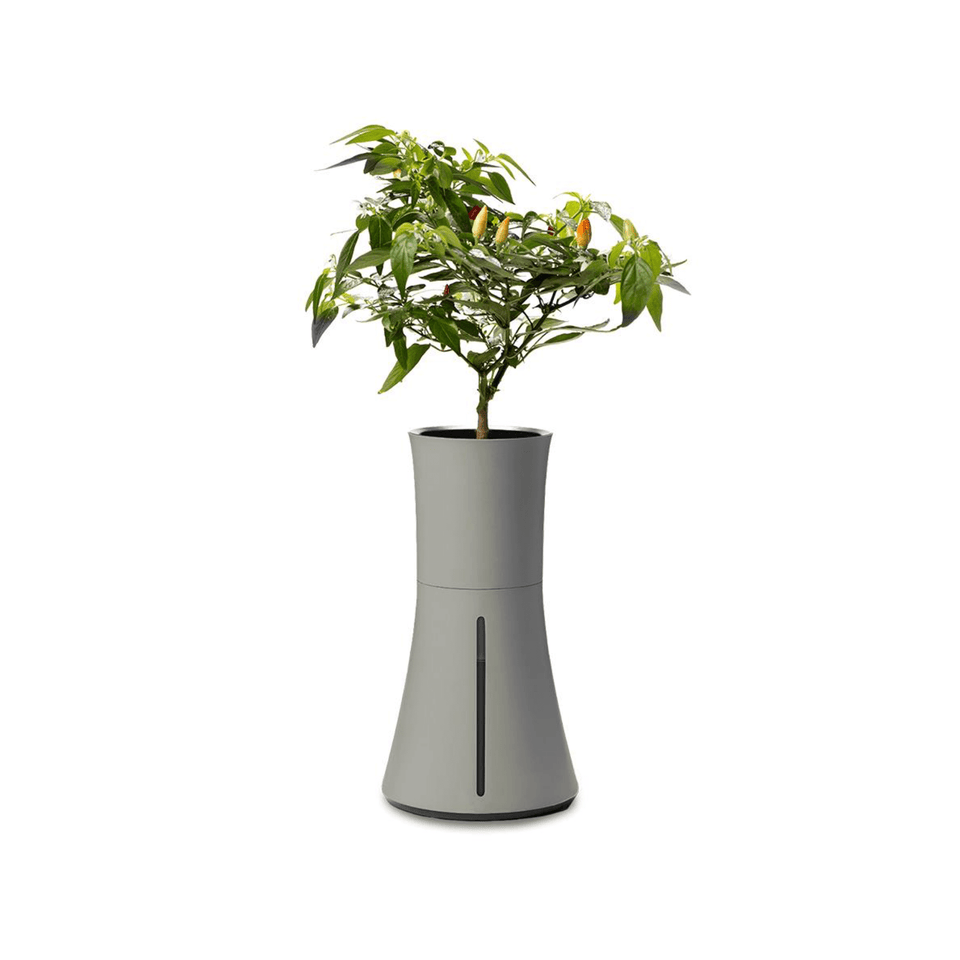 Botanium: The Self Watering Planter