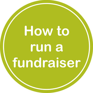 green how to run a fundraiser icon