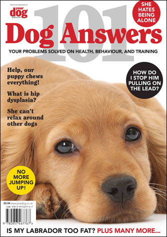 101 Dog Answers