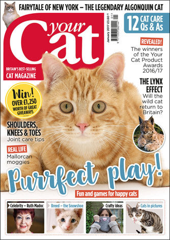 Your Cat Magazine January 2017
