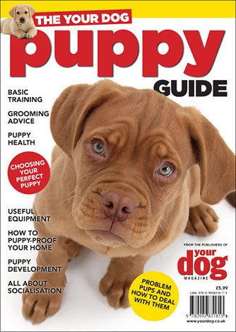 The Your Dog Puppy Guide