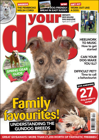 Your Dog Magazine April 2017 - LATEST ISSUE