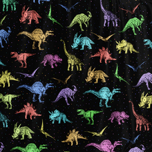 Load image into Gallery viewer, Personalized Dino Eccentrics Hooded Blanket