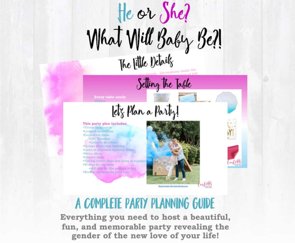 Gender Reveal Party Plan