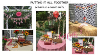 Down on the Farm Birthday Party Plan