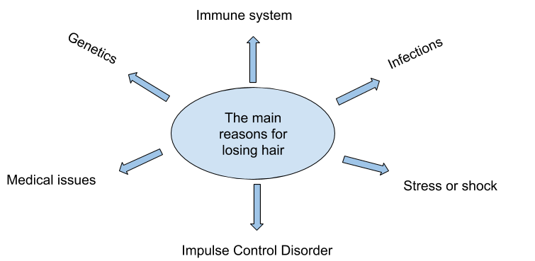 Chart showing the main reasons for hair loss