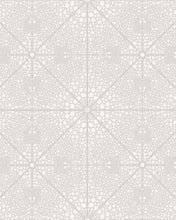 Load image into Gallery viewer, SHAGREEN - GRAY
