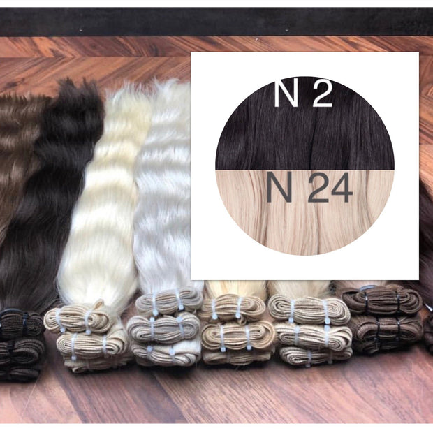 Wefts ombre 2 and 24 Color GVA hair - GVA hair