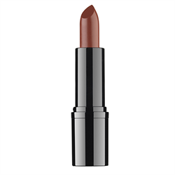 Professional Lipstick #17 RVB Lab the Makeup
