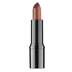 Professional Lipstick #19 RVB Lab the Makeup