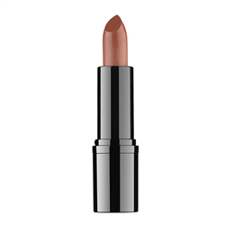 Professional Lipstick #20 RVB Lab the Makeup