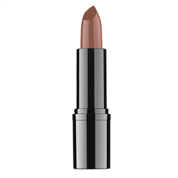 Professional Lipstick #18 RVB Lab the Makeup