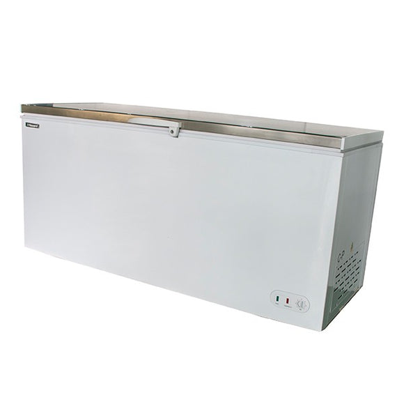 Blizzard CF650SS Chest Freezer with S/Steel Lid 650L