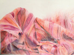 Tara's carefully rendered colour pencil work