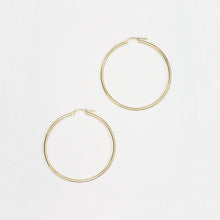 Load image into Gallery viewer, Nitten Hoop Earrings