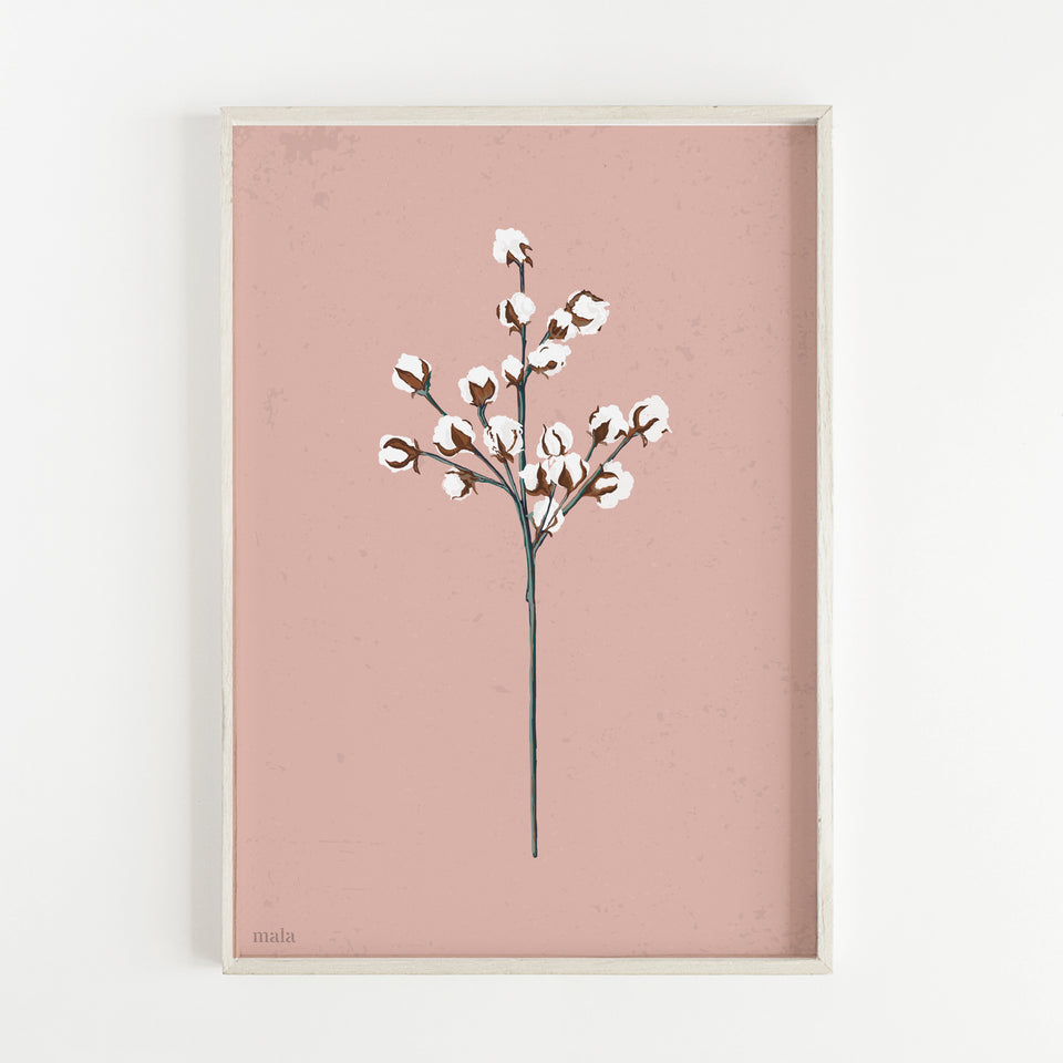 COTTON BRANCH poster