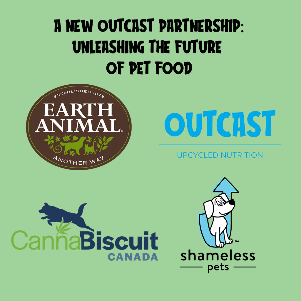 Cannabis, Canines and 
