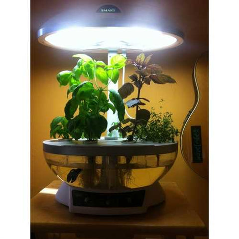 Image of Tabletop Hydroponics Fish Tank Planter Aquaponics System with Grow Light
