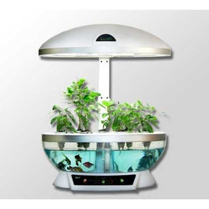 Tabletop Hydroponics Fish Tank Planter Aquaponics System with Grow Light