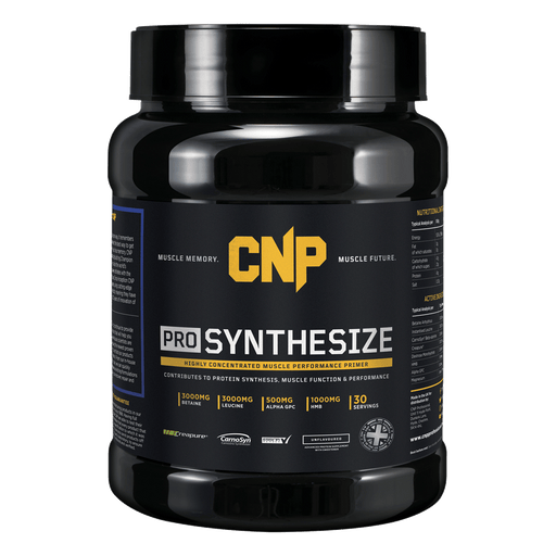 Pro Synthesize 450g - Supplement Dealz