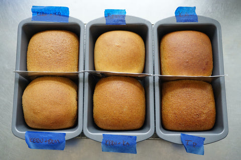 Kernza bread loaves with different inclusions of commercial flours