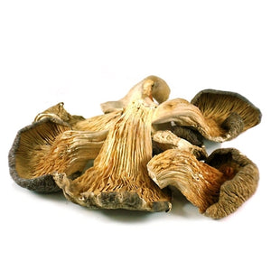 Dried Oyster Mushrooms - 1 lb