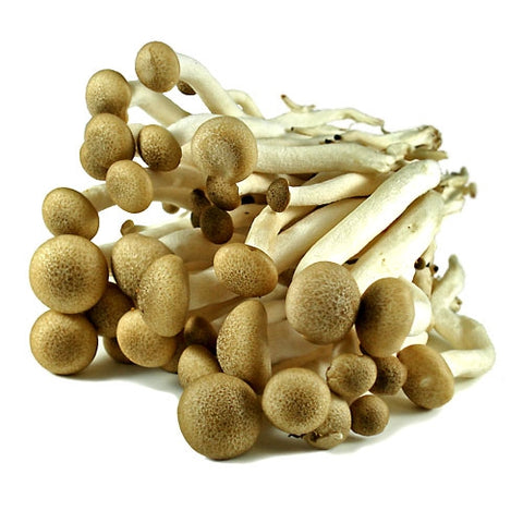 Fresh Organic Brown Clamshell Mushrooms - 3 lb