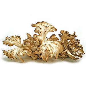 Fresh Hen of the Woods (Maitake) - 3 lb