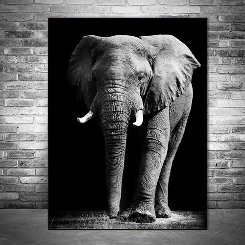 Elephant Wall Art Canvas Paintings Black And White Animals Wall Posters And Prints Wall Pictures - Cirque Africa Merchandise