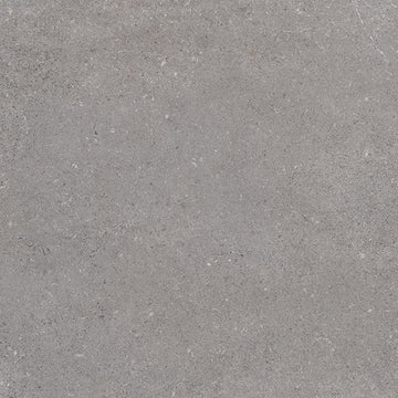 Porcelain tiles. Concrete look. Nassau-r grafito 23.23x23.23