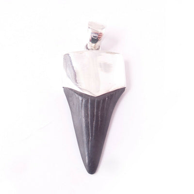 Megalodon Shark Tooth 925 Solid Sterling Silver Pendant Mens Jewelry Surfer Gift