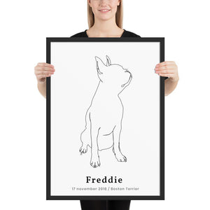 Personlig Plakat af Boston Terrier m. Ramme - ThePupPoster