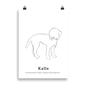 Personlig Plakat af Lagotto Romagnolo | ThePupPoster