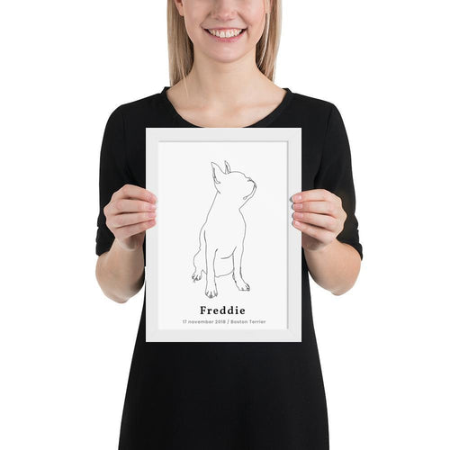 Personlig Plakat af Boston Terrier m. Ramme | ThePupPoster