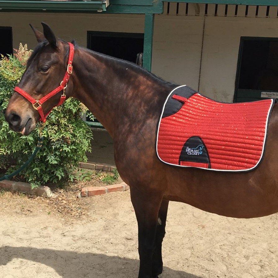 Glitter Sparkly Dressage Saddle Pad Bright Red