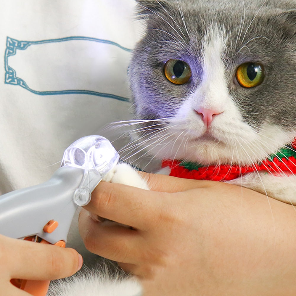 Professional LED Pet Nail Clipper Scissors Pet
