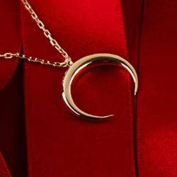 Cosmic Horn Tusk Necklace Gold - LATELITA