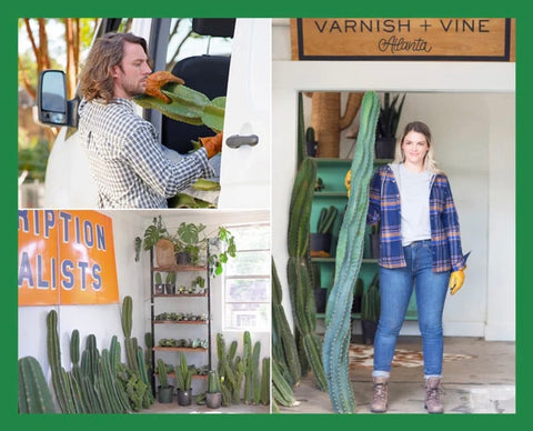 Dickies Cactus Makers additional photoshoot
