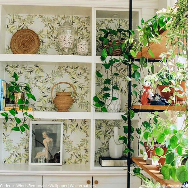 You Grow Girl! Peel and Stick Nature Wallpaper from Wallternatives - Vine Leaves Wall Pattern - Boho Wallpaper - Bohemian Living Room Wall Decor